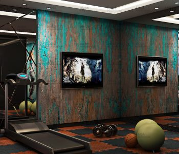 Gym design art hotel in Srinagar.